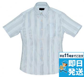 レディース半袖シャツ(柄)