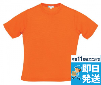 半袖レディースTシャツ