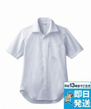 シャツ[兼用]