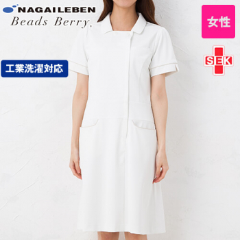 LH6217 ナガイレーベン(nagai