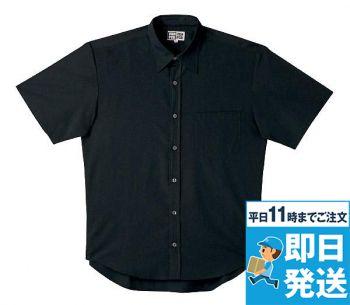 半袖シャツ(レギュラー)