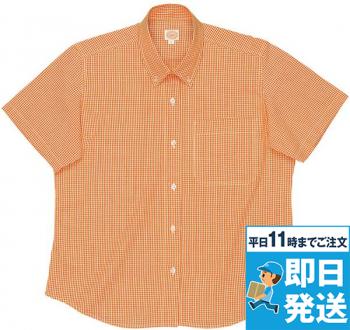 レディース半袖ギンガムチェックBDシャツ