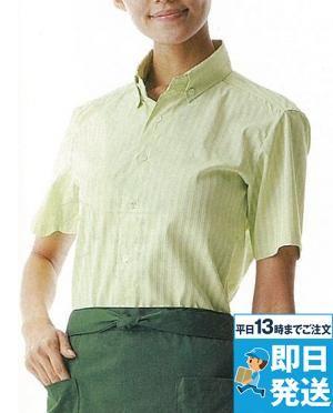 シャツ(半袖)[兼用]