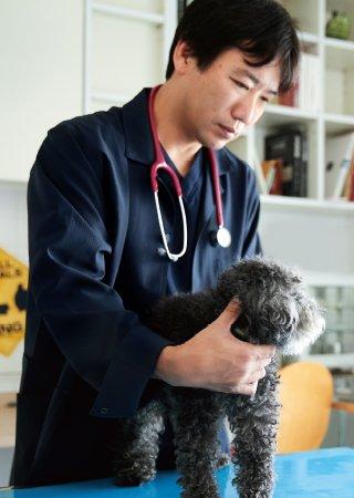 田園調布動物病院の田向先生