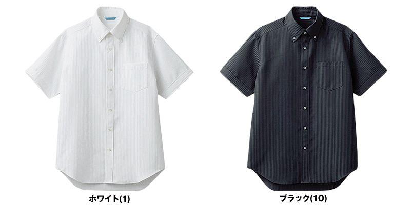 BC-6919 チトセ(アルベ) ブランチ ボタンダウンシャツ/半袖(男性用) 色展開