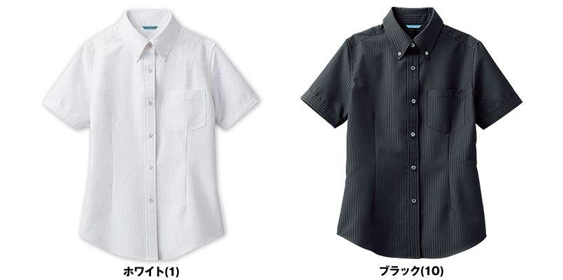 BC-6921 チトセ(アルベ) ブランチ ボタンダウンシャツ/半袖(女性用) 色展開