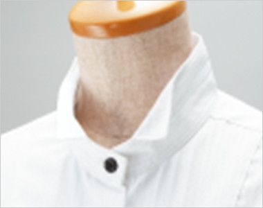 24212 BONUNI(ボストン商会) シャツ/長袖(女性用) ドビーストライプ ウィングカラー仕様