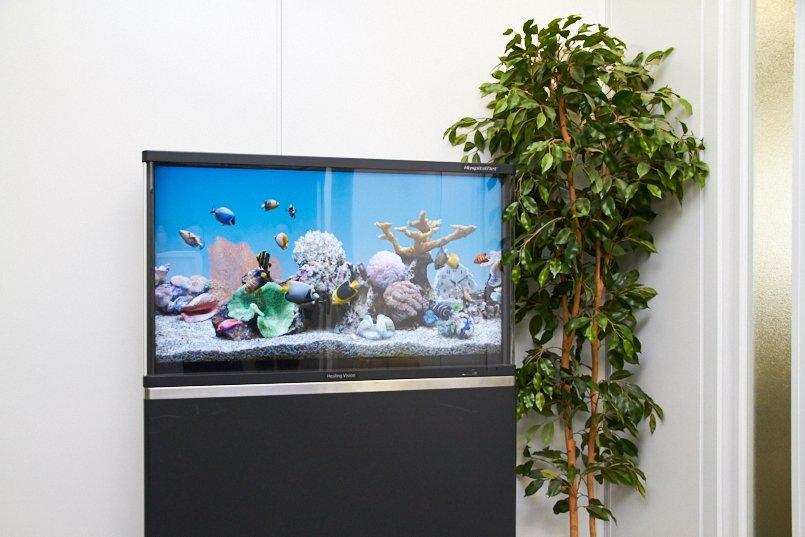 かわいい魚が泳ぐ姿に癒される、デジタルサイネージソリューション